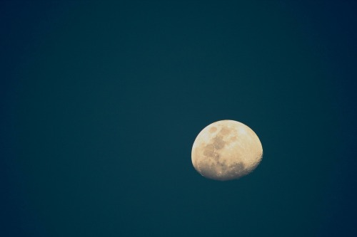 moon-316471_1280